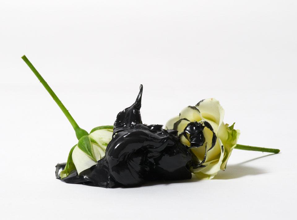 frauke-staerk_flowers_fett-blumen_02